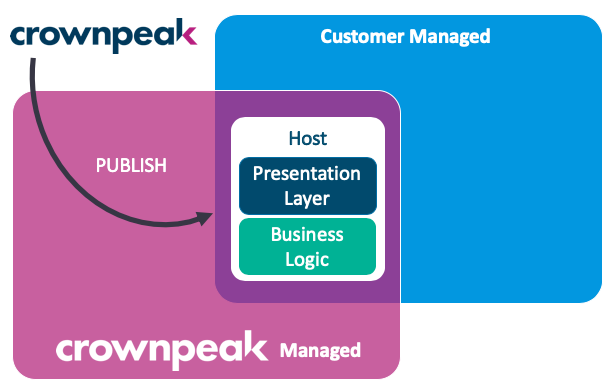 Crownpeak Digital Experience Layer℠ - Standalone Pattern